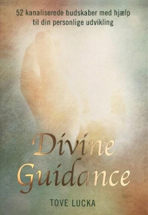 divine-guidance-tove-lucka